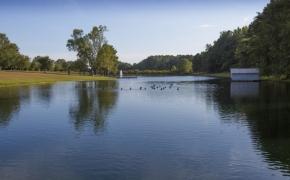 Gabriel Farm Pond 4