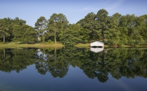 Gabriel Farm Pond 5