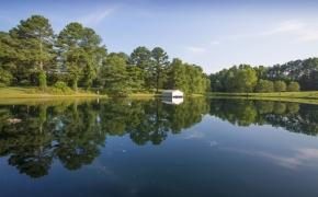 Gabriel Farm Pond 6
