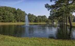 Gabriel Farm Pond 8