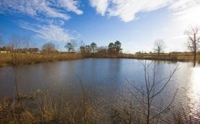 5820 Zebulon pond