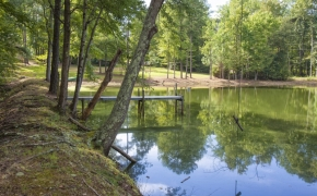 Green Hill Road pond 5