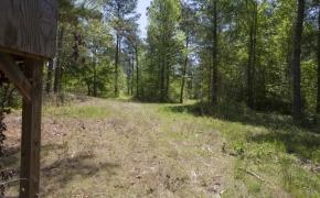 Harnett County 14.jpg