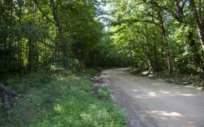 Hicks-Road-2