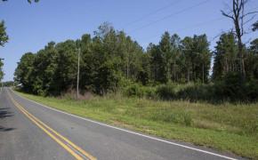 Hicks-Road-5
