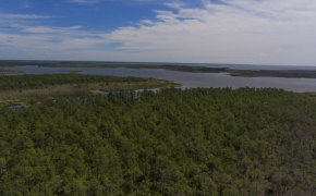 887 Acres Spencers Bay 1
