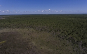 887 Acres Spencers Bay 4