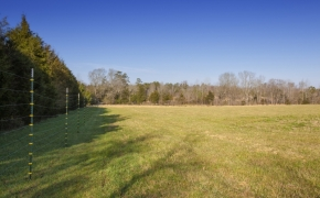 1058 McLaurin Road Field 4