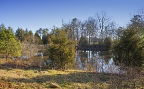 1058 McLaurin Road Water Hole