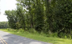 Liles-Dean-Road-10