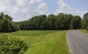 Liles-Dean-Road-7