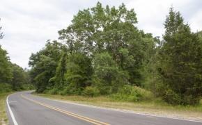 Moncure Road 2
