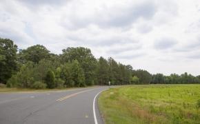 Moncure Road 3