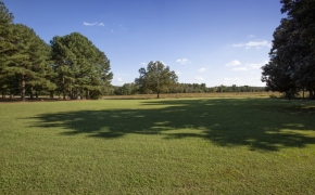Magnolia Manor Grounds 7