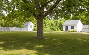 Oak Lawn Plantation 9