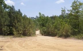 Partian Road 7