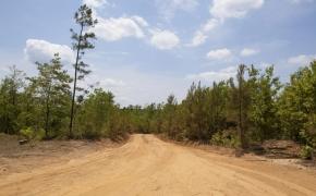 Partian Road 9