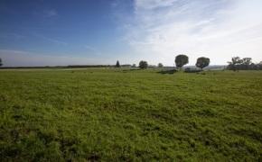 Patterson-Farm-Grounds-1