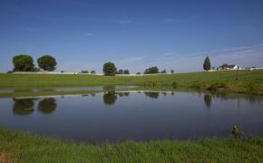 Patterson-Farm-Grounds-14