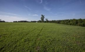 Patterson-Farm-Grounds-18
