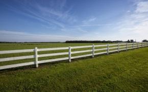 Patterson-Farm-Grounds-2