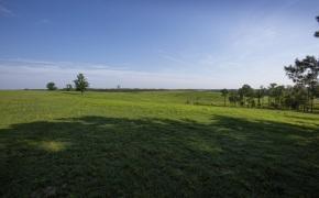 Patterson-Farm-Grounds-21