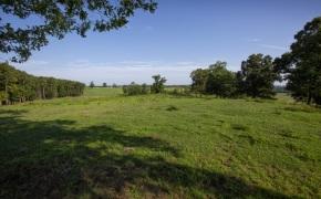 Patterson-Farm-Grounds-23