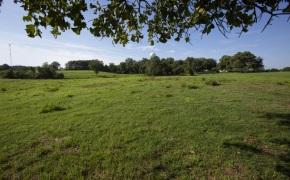 Patterson-Farm-Grounds-25