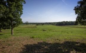 Patterson-Farm-Grounds-26