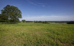 Patterson-Farm-Grounds-29