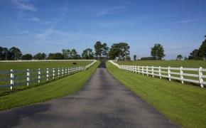 Patterson-Farm-Grounds-3