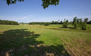 Patterson-Farm-Grounds-34