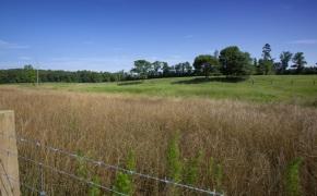 Patterson-Farm-Grounds-35