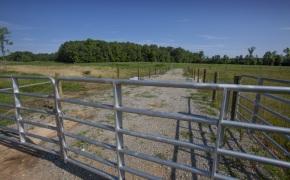 Patterson-Farm-Grounds-36