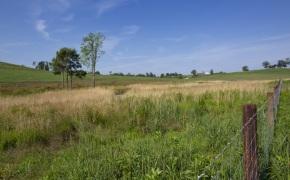 Patterson-Farm-Grounds-38
