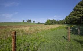 Patterson-Farm-Grounds-39