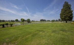 Patterson-Farm-Grounds-44