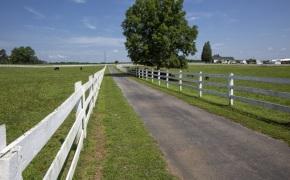 Patterson-Farm-Grounds-49