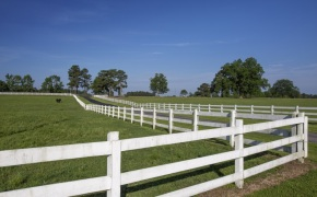 Patterson-Farm-Grounds-5