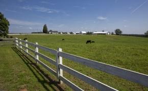 Patterson-Farm-Grounds-50