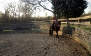 Crissy Riding Mar in Round Ring