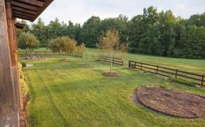 Guildford Horse Farm Backyard
