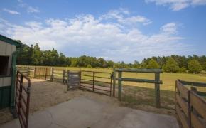 Guildford Horse Farm Barn 11