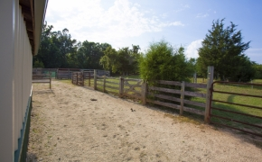 Guildford Horse Farm Barn 12