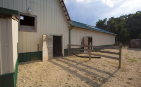 Guildford Horse Farm Barn 14