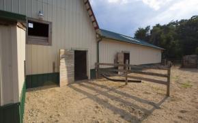 Guildford Horse Farm Barn 14