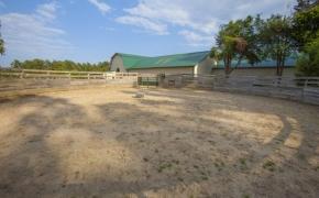 Guildford Horse Farm Barn 16