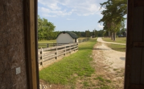 Guildford Horse Farm Barn 18
