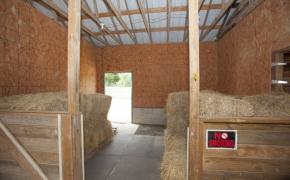Guildford Horse Farm Barn 2