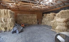 Guildford Horse Farm Barn 3